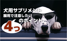 犬用サプリメントの注意点