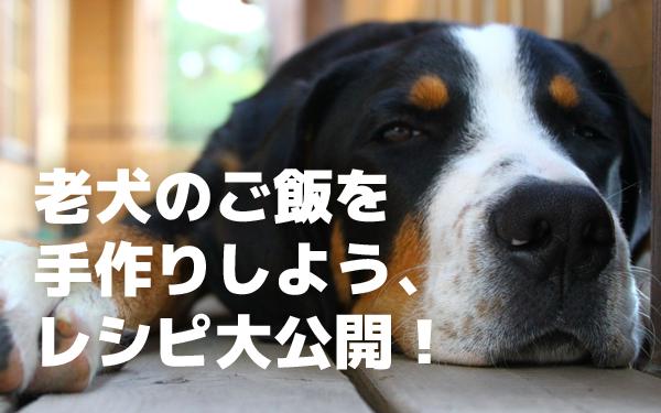 シニア犬・老犬に手作りの食事、簡単レシピ大公開!