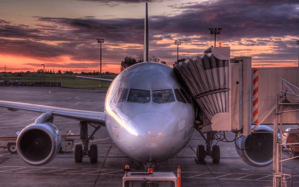 犬と飛行機で海外旅行! 乗せられない犬種、料金、注意点など