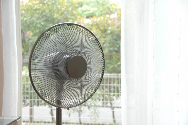 犬の熱中症対策に扇風機は意味ない?